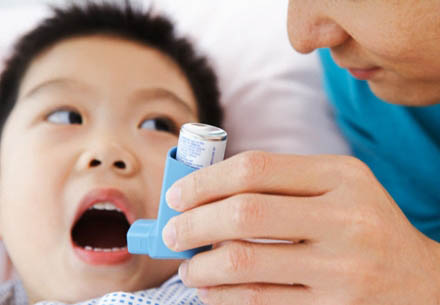 Thảo dược điều trị hen suyễn hiệu quả 1