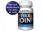 LAB WELL FLEX JOINT