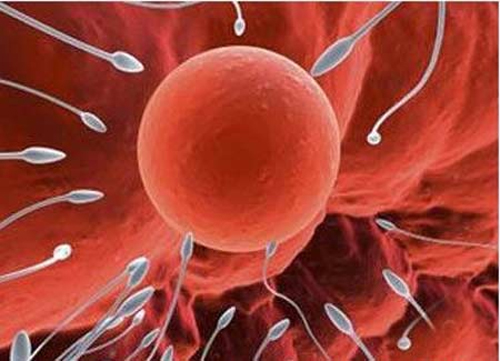 Dấu hiệu, triệu chứng vô sinh ở nam giới 1
