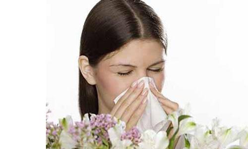 Bài thuốc dân gian điều trị dứt điểm viêm mũi dị ứng 1