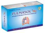 PULMASOL